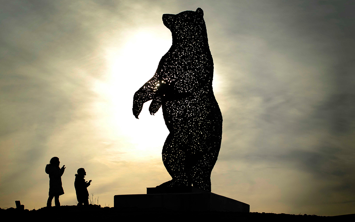 Dunbar Bear