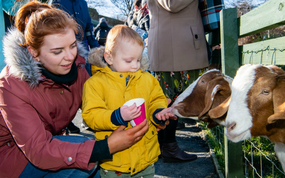 LOVE Gorgie Farm calls for volunteers to deliver free breakfasts and food bank donations as it temporarily closes